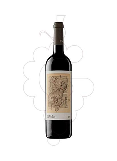 Foto 12 Volts vino tinto
