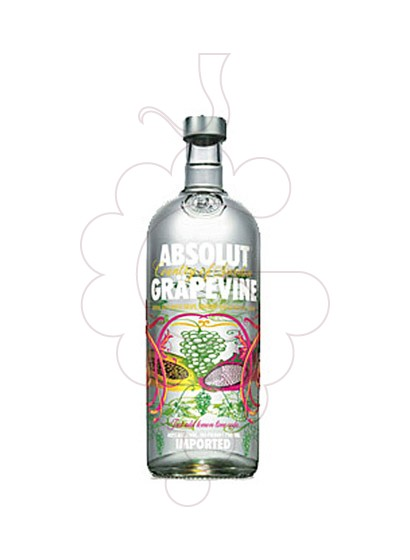 Foto Vodka Absolut Grapevine