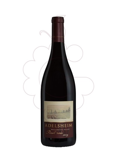 Foto Adelsheim Willamette Valley Pinot Noir vino tinto