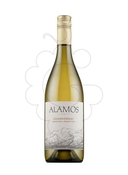 Foto Alamos Chardonnay vino blanco