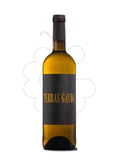 Foto Albariño Terras Gauda Etiqueta Negra vino blanco