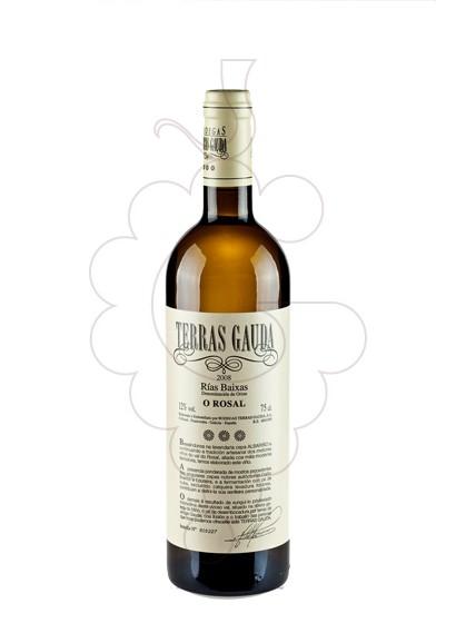 Foto Albariño Terras Gauda vino blanco