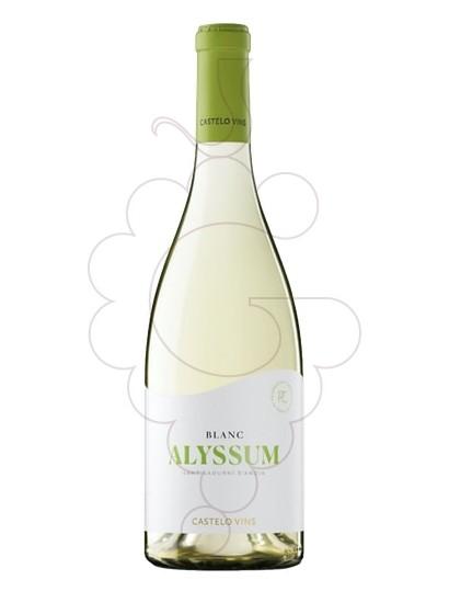 Foto Alyssum vino blanco