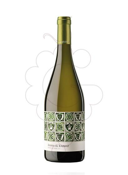 Foto Ànima de Raimat Blanco Magnum vino blanco