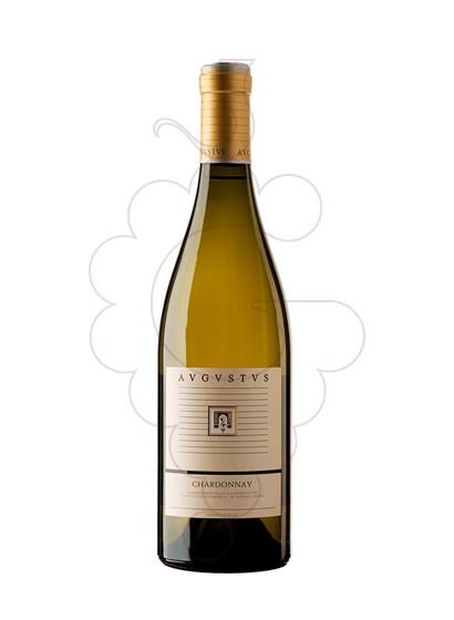 Foto Augustus Chardonnay vino blanco