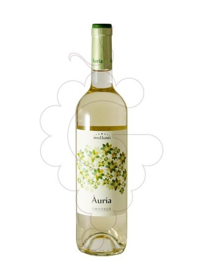 Foto Mas Llunes Àuria vino blanco