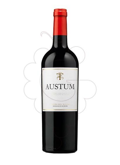 Foto Austum vino tinto