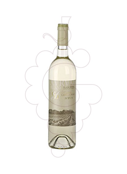 Foto Avrvm Blanc vino blanco