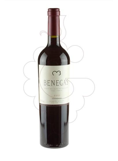 Foto Benegas (Argenti) vino tinto