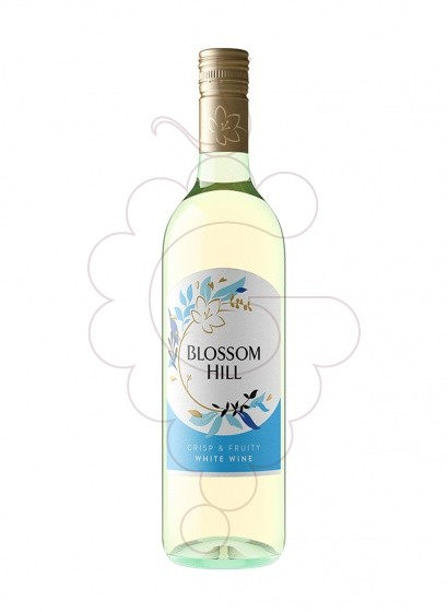 Foto Blossom Hill Blanco (California) vino blanco