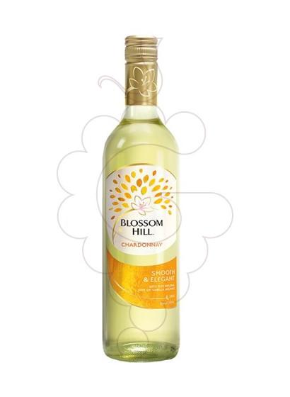 Foto Blossom Hill Chardonnay (California) vino blanco