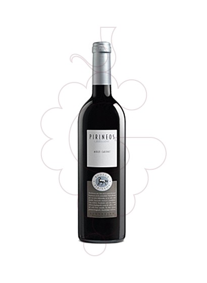 Foto Bodega Pirineos Merlot Cabernet vino tinto