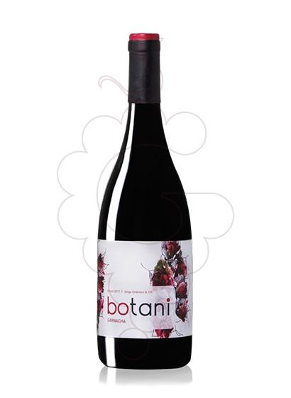 Foto Botani Negre Garnatxa vino tinto