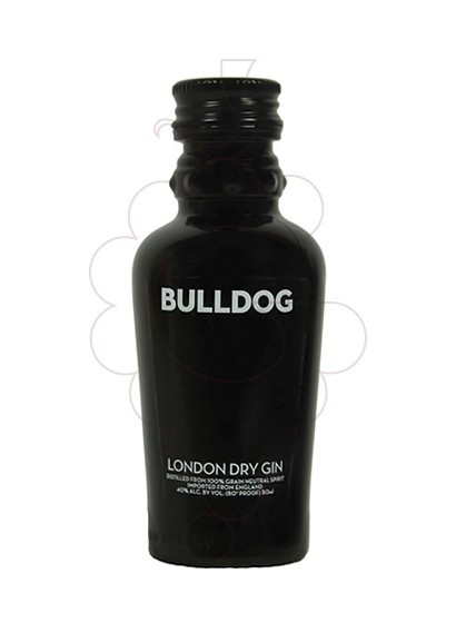Foto Ginebra Bulldog (mini)