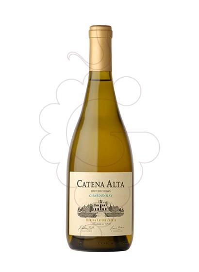 Foto Catena Alta Chardonnay  vino blanco