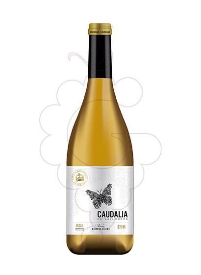 Foto Caudalia de Vallobera vino blanco