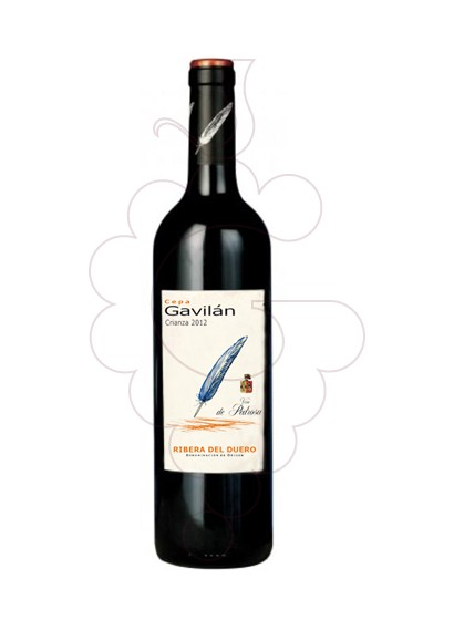 Foto Cepa Gavilan vino tinto
