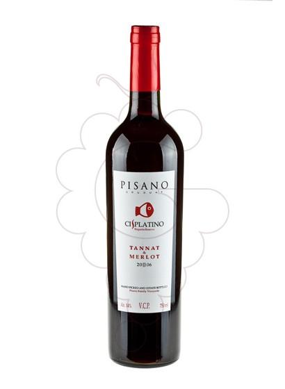 Foto Cis Platino Merlot (Uruguay) vino tinto