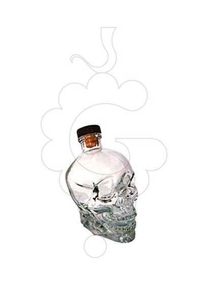 Foto Vodka Crystal Head