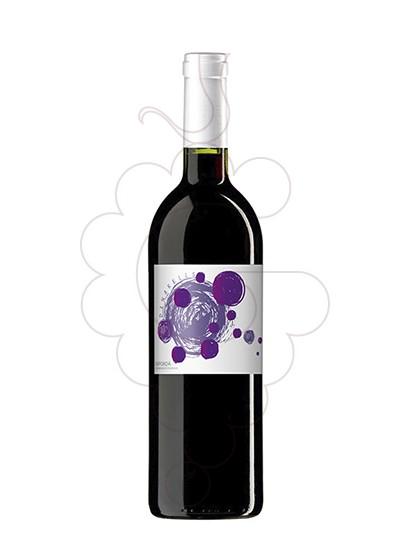Foto Dinarells Negre Jove vino tinto