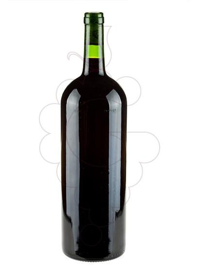 Foto Dominio de Eguren Magnum vino tinto