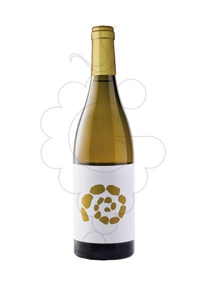 Foto El Missatger Blanco vino blanco