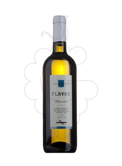 Foto Flavus Blanc  vino blanco