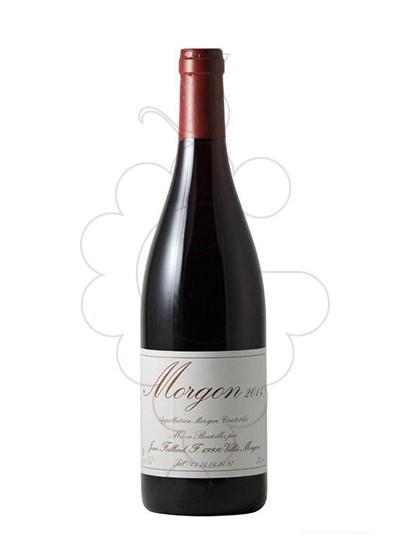 Foto Foillard Morgon Côte du Py vino tinto