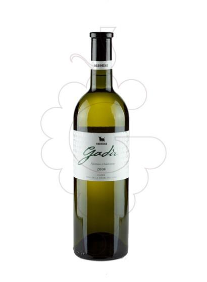 Foto Gadir Blanc vino blanco
