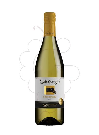 Foto Gato Negro Blanco Chardonnay vino blanco