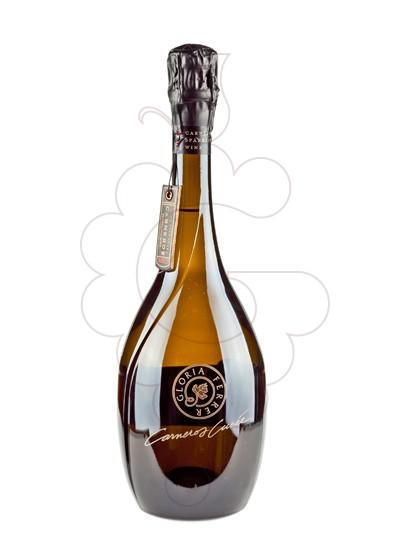 Foto Gloria Ferrer Carneros Cuvee vino espumoso