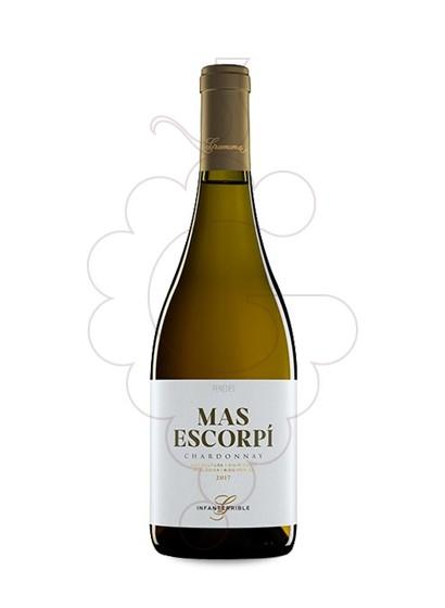 Foto Gramona Mas Escorpí vino blanco
