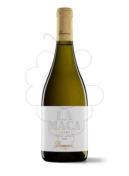 Foto Gramona La Maca vino blanco