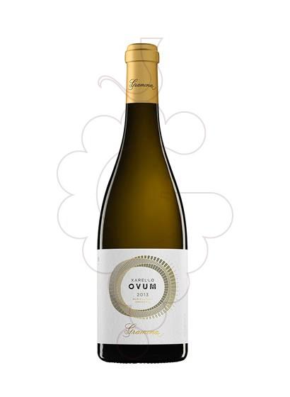 Foto Gramona Ovum vino blanco