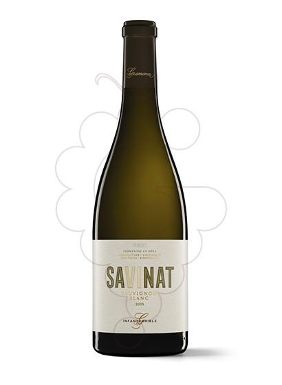 Foto Gramona Sauvignon Blanc vino blanco