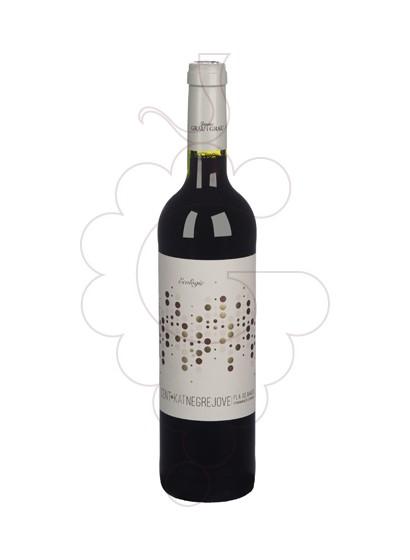 Foto Jaume Grau Grau Cent·Kat vino tinto