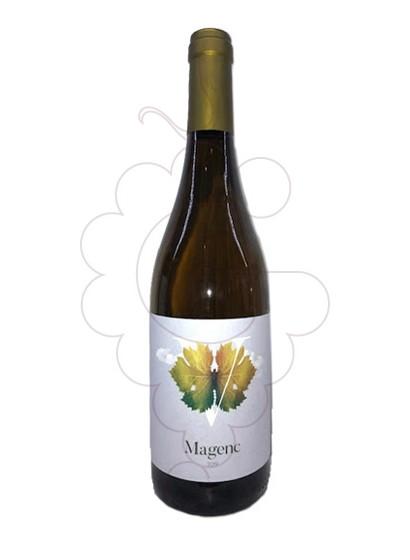 Foto Magenc vino blanco