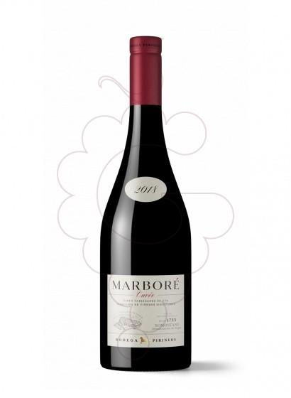 Foto Marbore  vino tinto