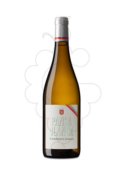 Foto Marques d'Alella Classic Pansa Blanca vino blanco