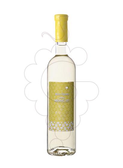 Foto Mas Llunes Dolç Moscat vino generoso