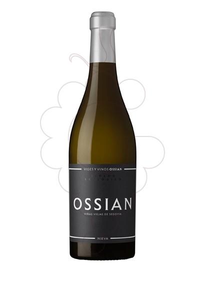 Foto Ossian vino blanco