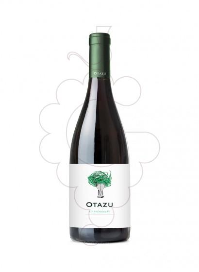 Foto Palacio de Otazu Chardonnay vino blanco