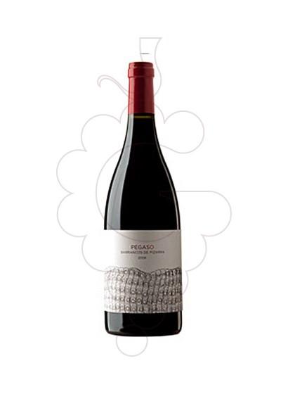 Foto Pegaso Barrancos de Pizarra vino tinto