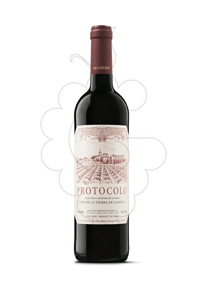 Foto Protocolo Tinto vino tinto