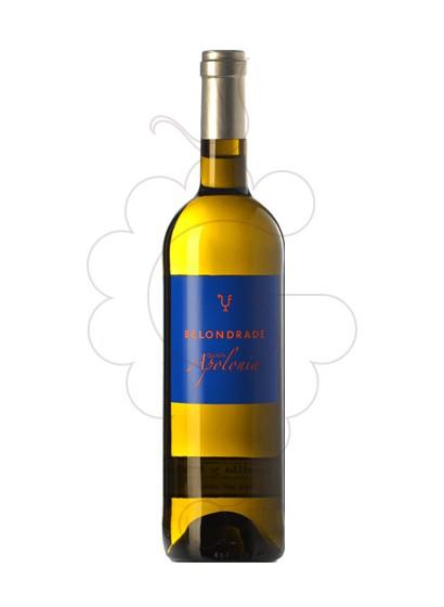 Foto Quinta Apolonia Belondrade vino blanco