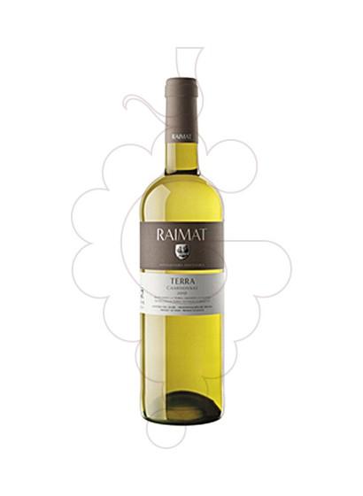 Foto Raimat Terra Chardonay vino blanco