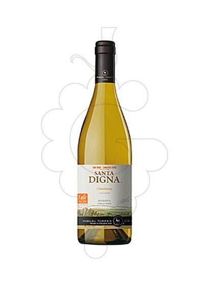Foto Sta. Digna Chardonnay  vino blanco