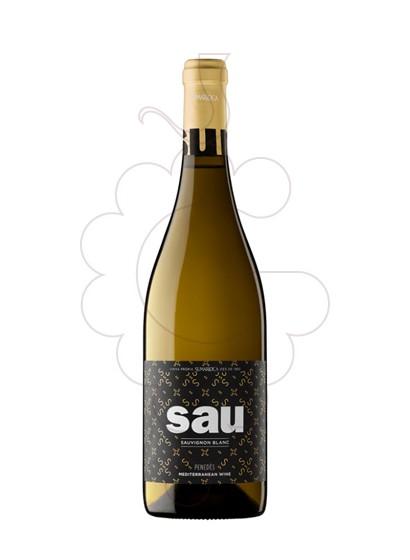 Foto Sumarroca Blanc Sauvignon vino blanco