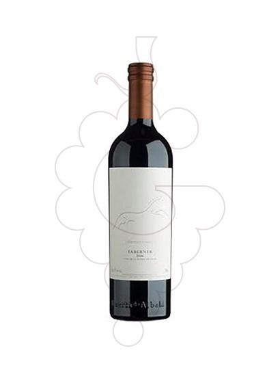 Foto Taberner vino tinto
