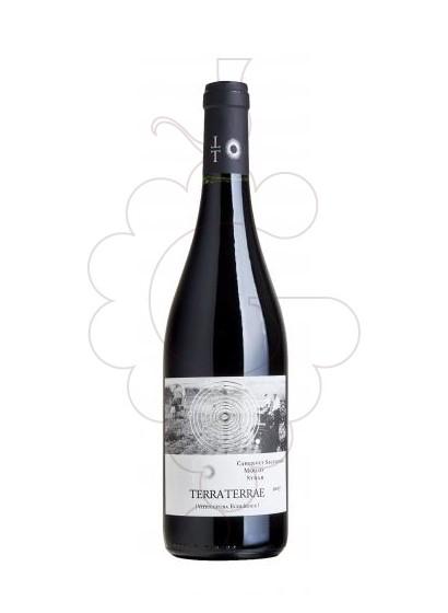 Foto Terra Terrae Tinto vino tinto